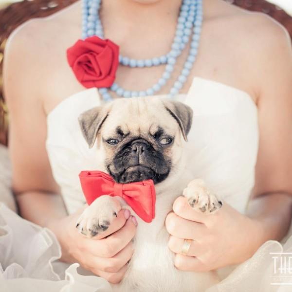 Wedding - Sweet Session