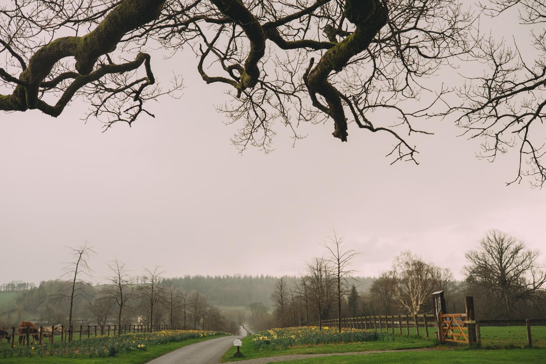 post_irlanda-218