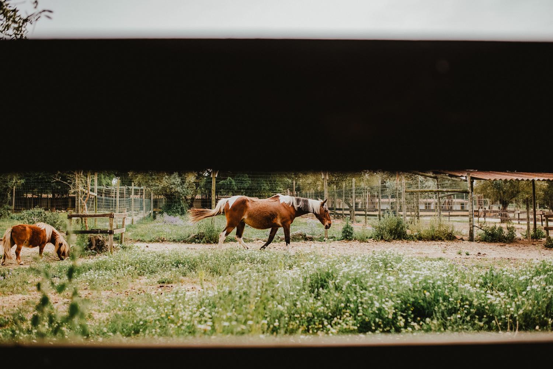 rural wedding portugal alentejo the framers wedding photography - 16