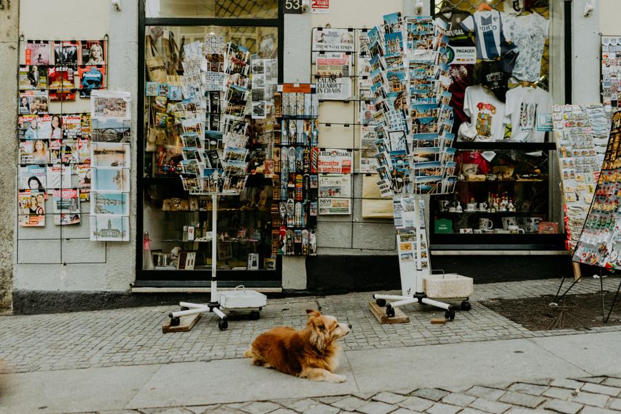 bodaf-porto-2016-blog-the-framers-00025