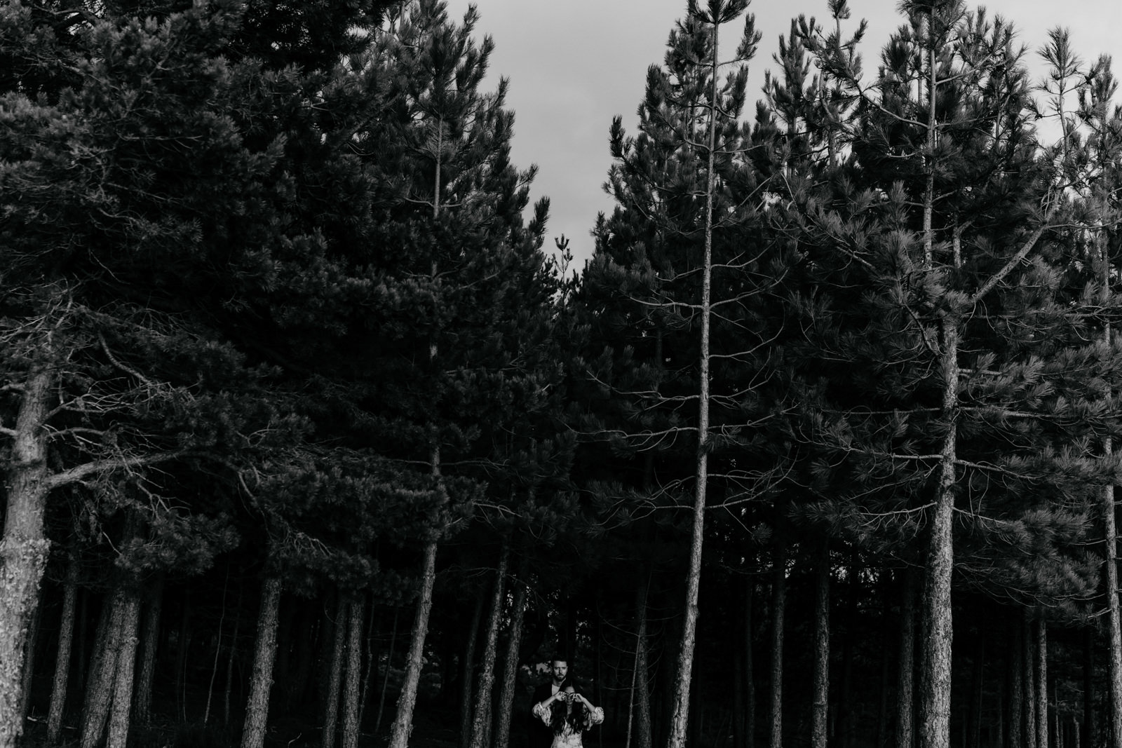 mountain love engagement the framers
